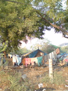 20101119 Delhi,India
