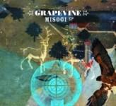 Grapevine_misogi