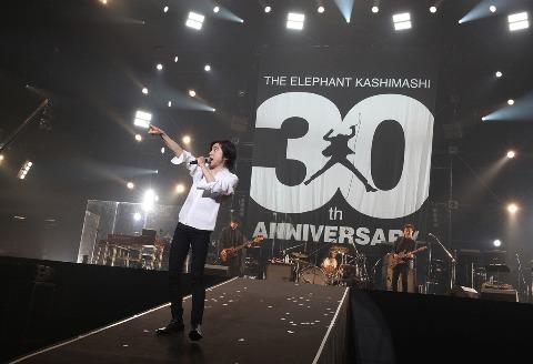 Elephantkashimashi_30thtour2017sait