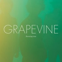 Grapevine_burningtree